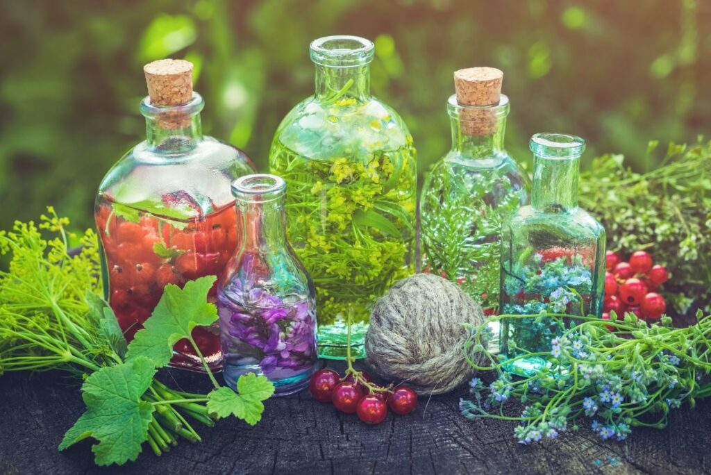 How to Make Herbal Tinctures at Home w/ Recipes - MyNaturalTreatment.com