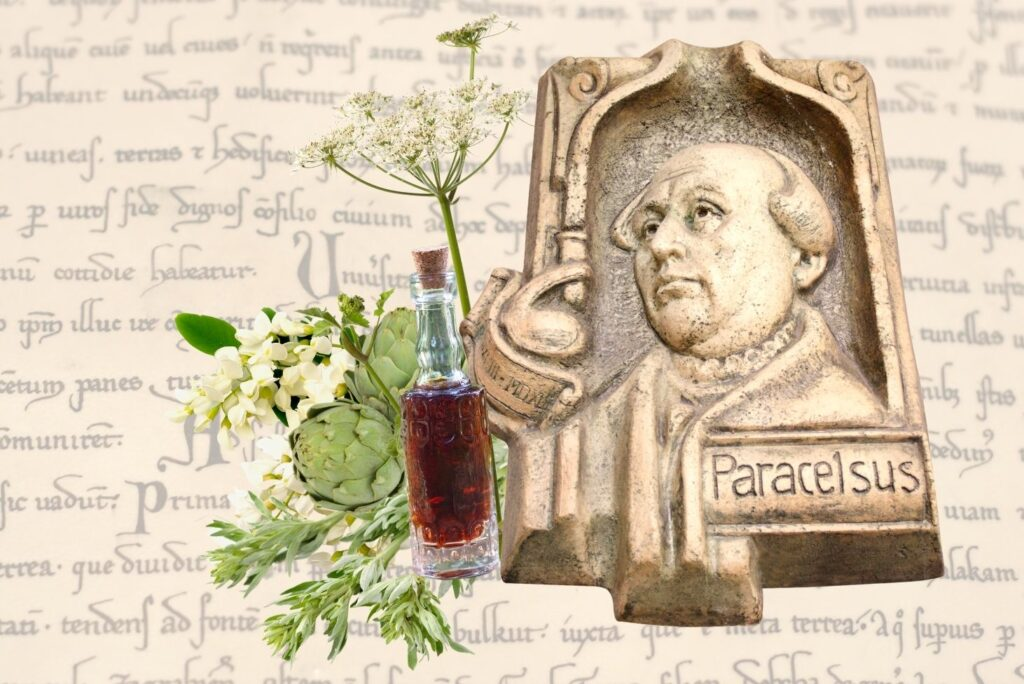 How to Make Swedish Bitter at Home - Swedish Bitter Recipe Paracelsus