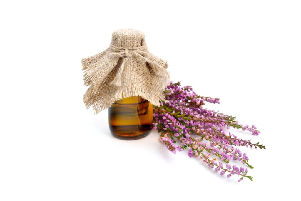 20 Natural Remedies with Tree Buds and Shoots Extracts - Calluna vulgaris