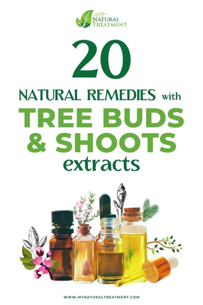 Natural Remedies with Tree Buds and Shoots Extracts - MYN