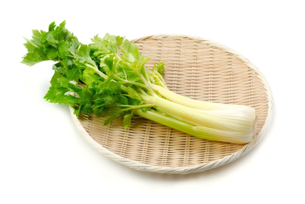 Herbs That Suppress Appetite Naturally - Celery - MYN