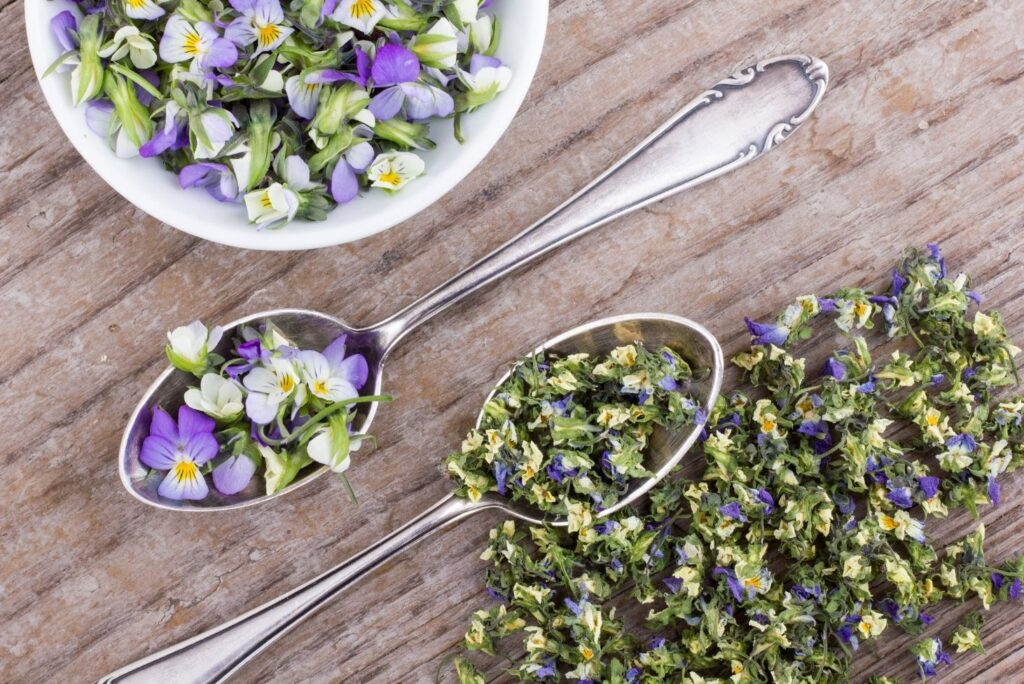 Natural Skin Care Recipes with Spring Flowers - Heartsease