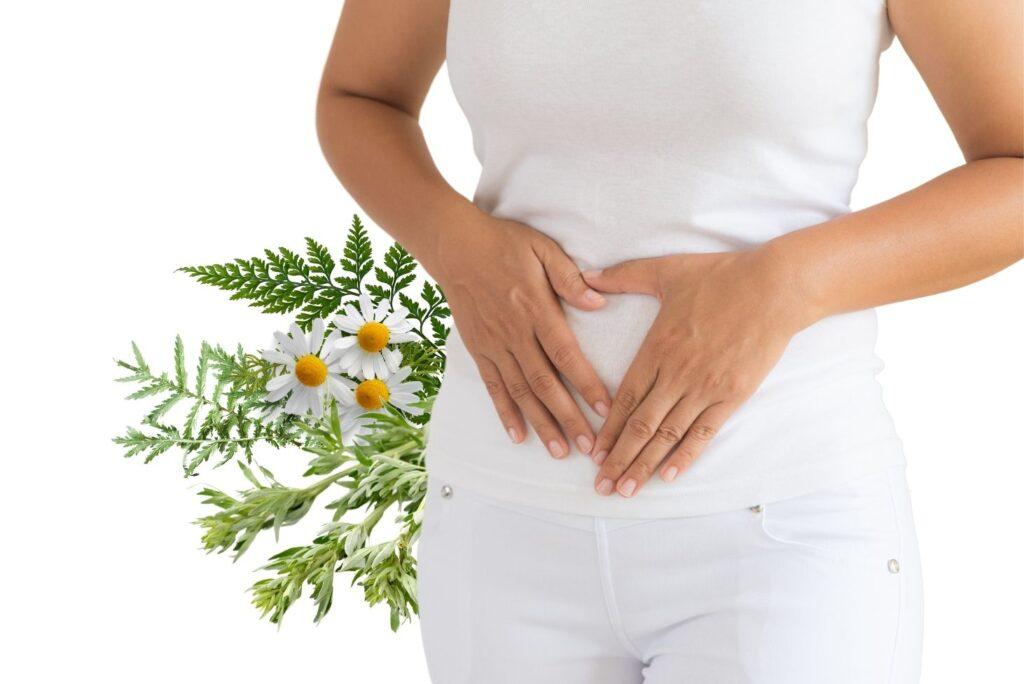 Powerful Herbs that Kill Parasites Naturally - MYN