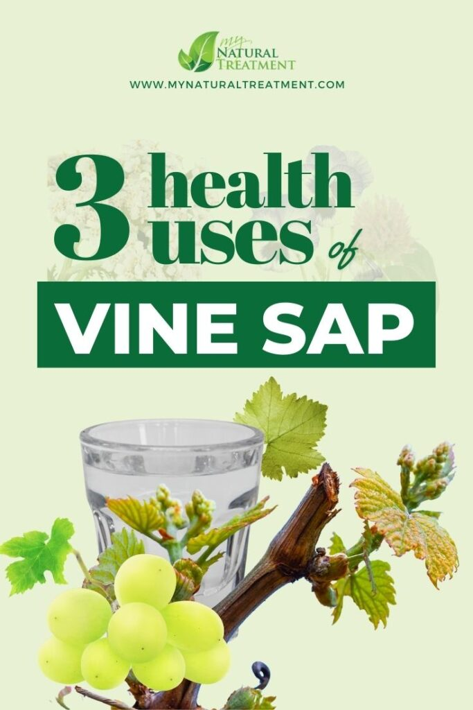 3 Unique Health Uses of Vine Sap - MyNaturalTreatment.com