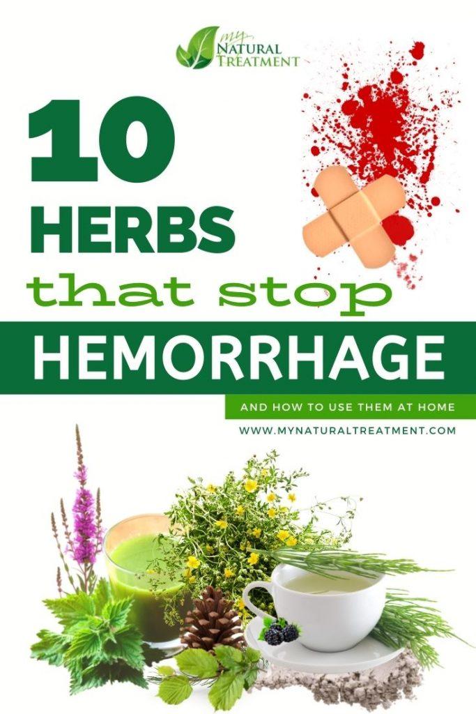 10 Best Herbs for Hemorrhage (Bleeding) - Herbs that stop hemorrhage - MyNaturalTreatment.com