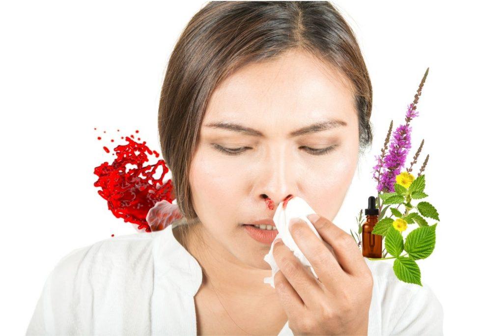 10 Best Herbs for Hemorrhages (Bleeding) - Herbs that Stop Hemorrhage - MYN