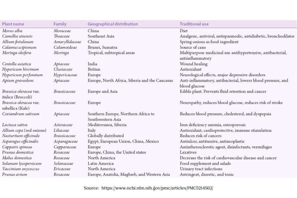 Medicinal Plants Containing Quercetin - MYN